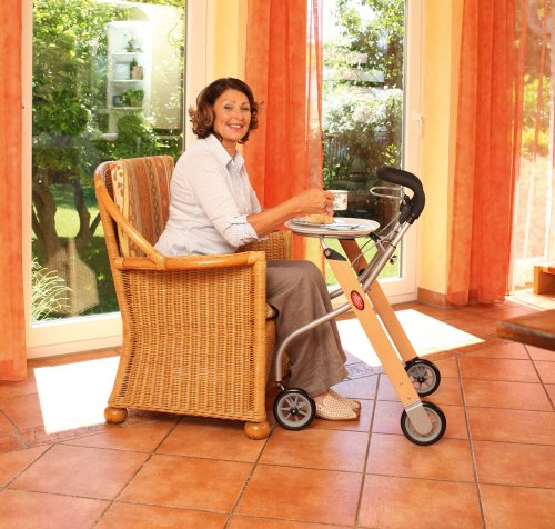 Indoor-Rollator Let`s go [Misc.]